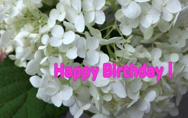 【毎月企画!!】7月生まれの卓球選手に誕生日コメントを送ろう😍